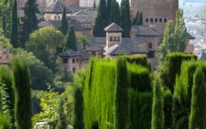 Alhambra (11)