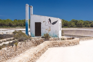 Formentera 066.jpg