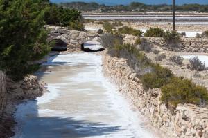 Formentera-Salinen-2015-15