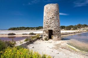 Formentera-Salinen-2015-4