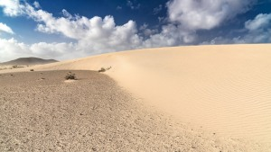 Fuerteventura-031