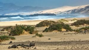 Fuerteventura-072