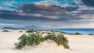 Fuerteventura-076