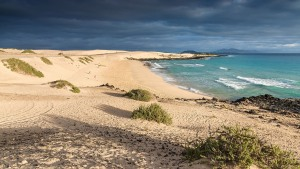 Fuerteventura-079