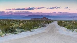 Mojave-Wüste-003