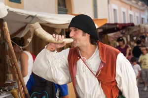 Mittelalterfest 12 (36)