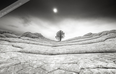 Poster-landscape-002