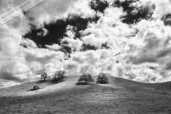 Poster-landscape-019