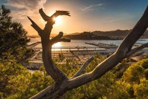 Ibiza-Hafen-18-008