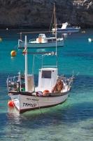 Fischerboote cala Vadella  (5)