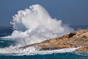 Sturm Portinax