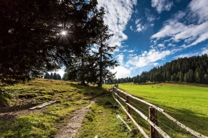 Südtirol (31)