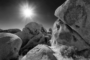 withe Tank, Joshua Tree NP.jpg